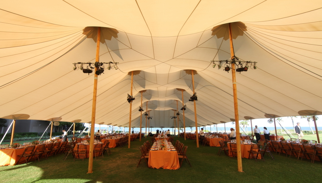 The canopy of the 66 x 126 tent.